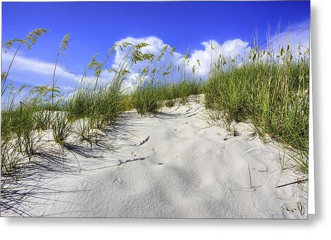 Florida Panhandle Greeting Cards - Pristine in Perdido Greeting Card by JC Findley