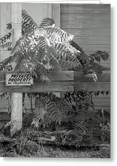 Private Property Greeting Card by Troy Montemayor