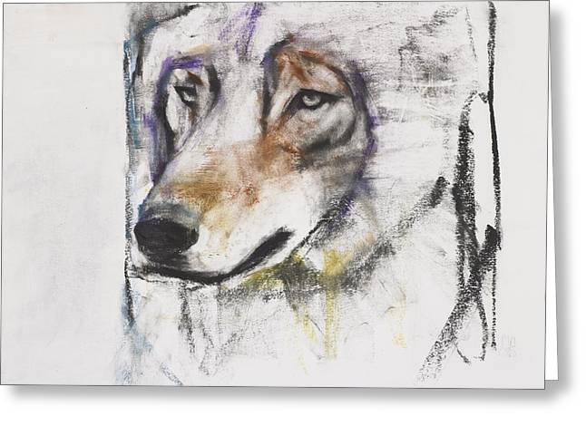Hound Drawings Greeting Cards - Processo Al Lupo Greeting Card by Mark Adlington