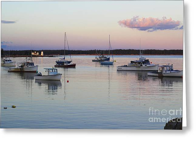 Prospects Greeting Cards - Prospect Harbor Maine Greeting Card by Katie W