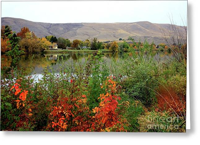 Yakima Valley Greeting Cards - Prosser Autumn River with Hills Greeting Card by Carol Groenen
