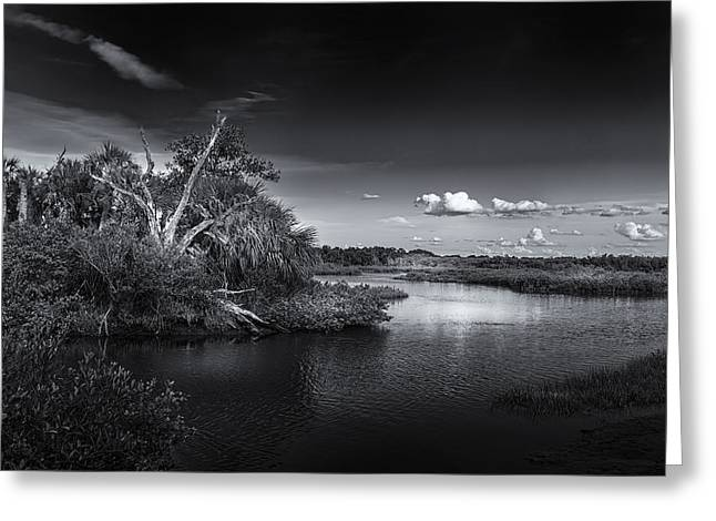 River View Greeting Cards - Protected Wetland Greeting Card by Marvin Spates