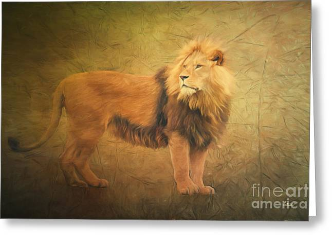 Wildcats Digital Greeting Cards - Proud Lion Greeting Card by Jutta Maria Pusl