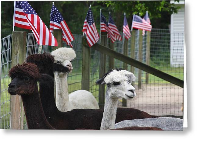 Apparel Greeting Cards - Proud to be Americans Greeting Card by Vadim Levin