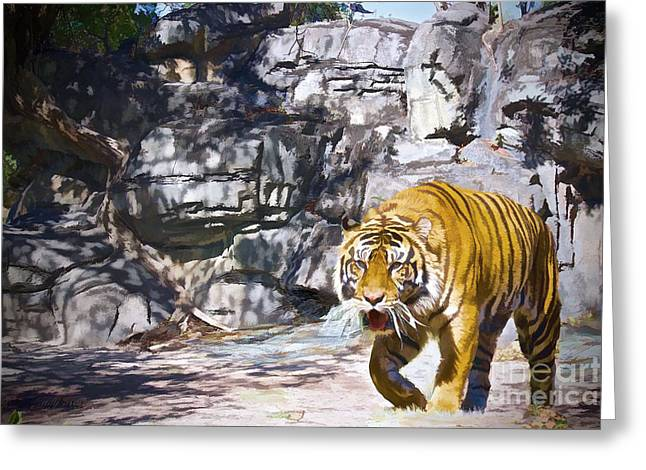 Wildcats Greeting Cards - Prowler Edition 3 Greeting Card by Judy Kay