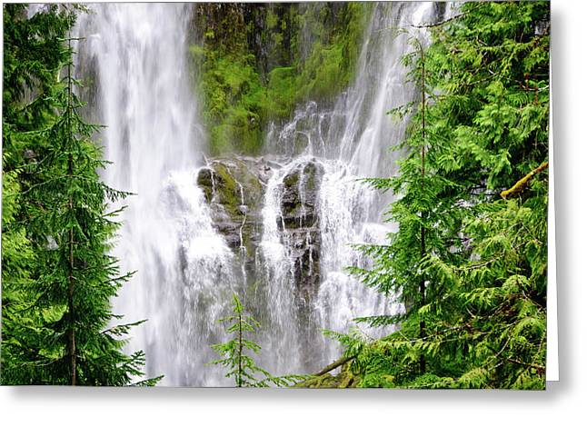 Proxey Falls Close-up Greeting Card by Connie Cooper-Edwards