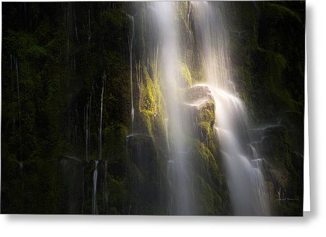 Mystical Landscape Greeting Cards - Proxy Falls Light Greeting Card by Leland D Howard