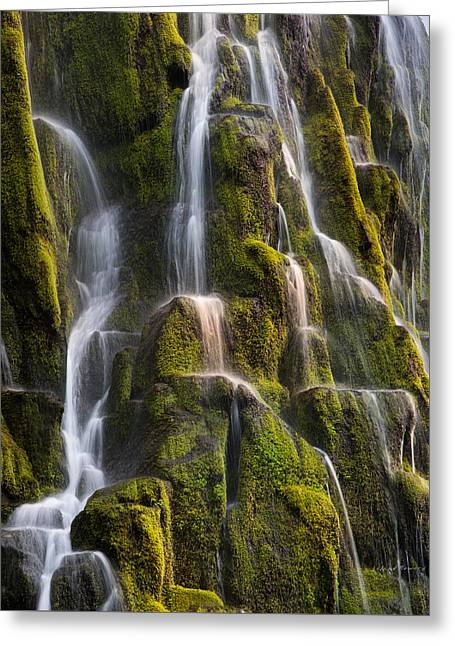 Proxy Falls Textures Greeting Card by Leland D Howard