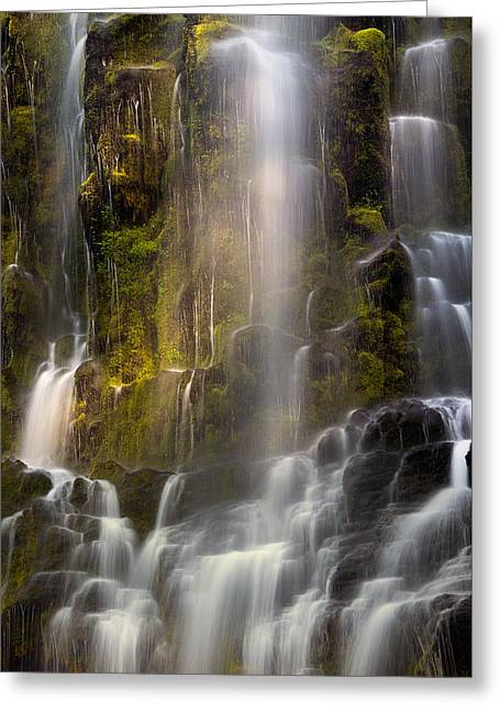 Proxy Falls Vertical Textures Greeting Card by Leland D Howard