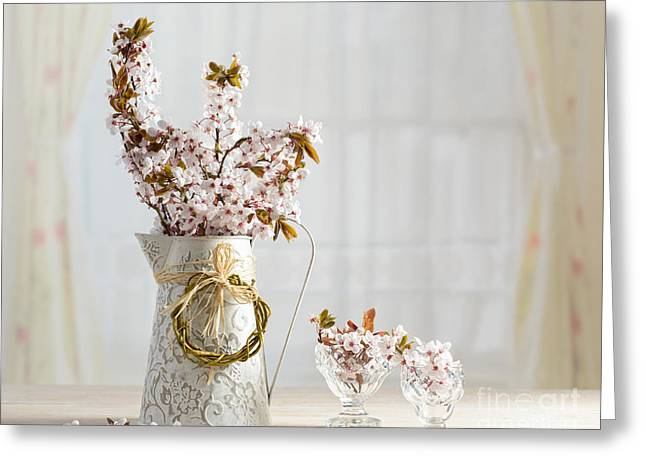 Antique Table Greeting Cards - Prunus Blossom Greeting Card by Amanda And Christopher Elwell