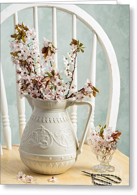 Interior Still Life Photographs Greeting Cards - Prunus Spring Blossom Greeting Card by Amanda And Christopher Elwell