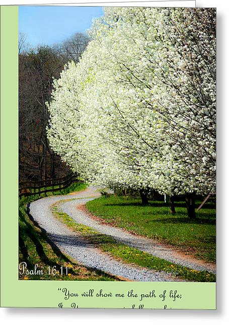 Psalm One Greeting Cards - Psalm 16 11 Greeting Card by Emanuel Tanjala