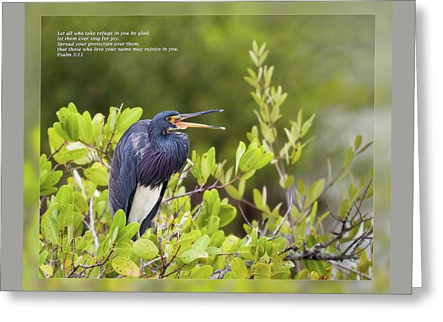 Wildlife Celebration Greeting Cards - Psalm 5 11 Greeting Card by Dawn Currie