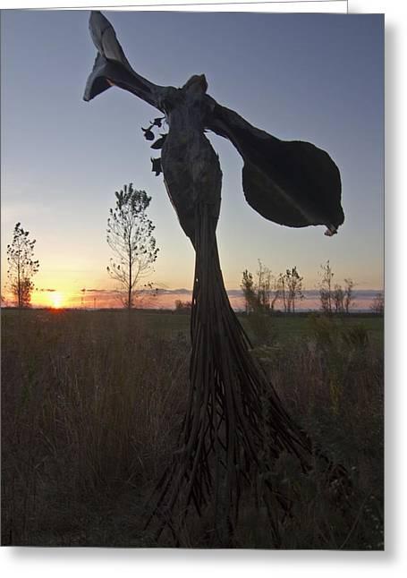 Public Art At Sun Rise Greeting Card by Sven Brogren