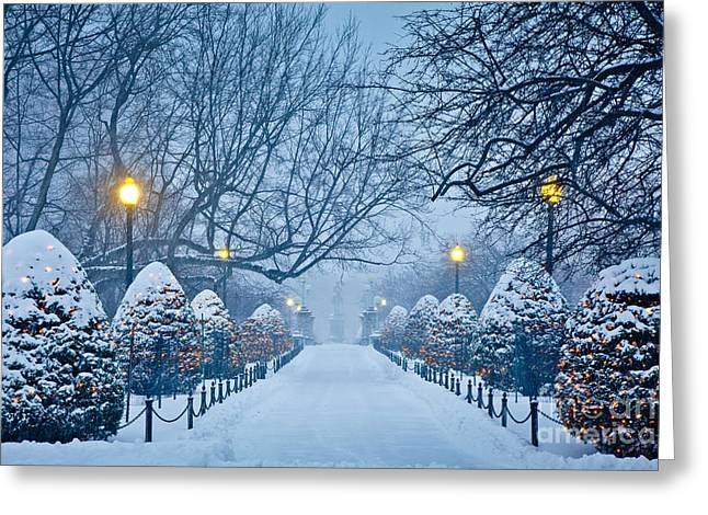 New England Winter Greeting Cards - Public Garden Walk Greeting Card by Susan Cole Kelly