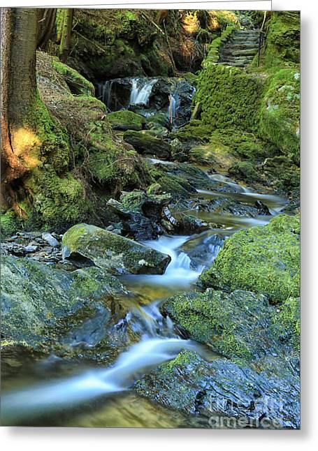 Babbling Greeting Cards - Pucks Glen Waterfall Greeting Card by JM Braat Photography