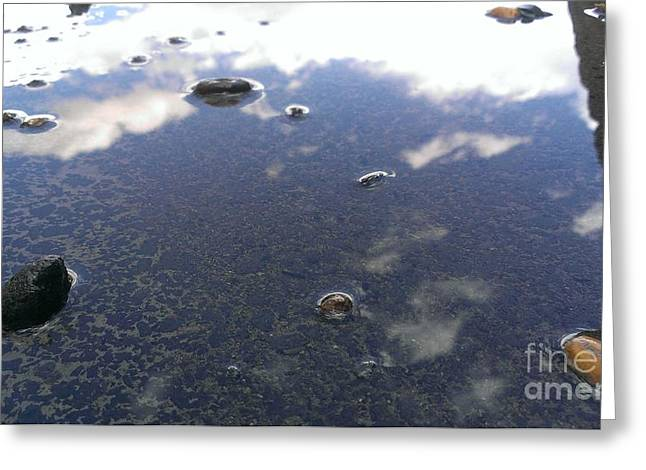 Reflecting Water Greeting Cards - Puddle Reflection Greeting Card by LKB Art and Photography