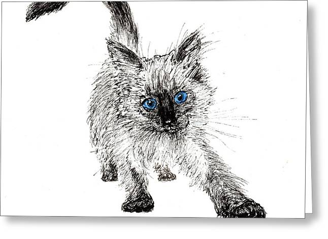 Pudsquiz Belina On The Prowl  Greeting Card by Vincent Alexander Booth