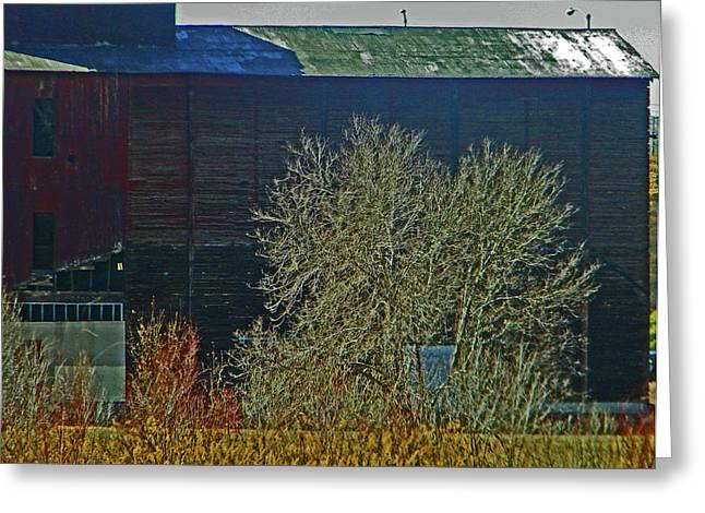 Pueblo Downtown-Sweeny Feed Mill 6 Greeting Card by Lenore Senior