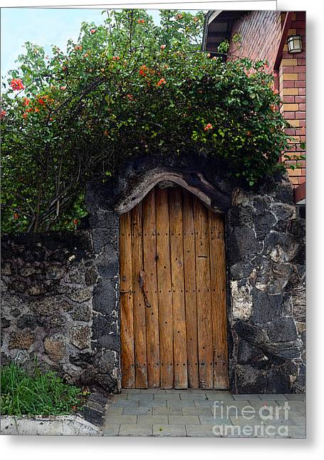 Santa Cruz Greeting Cards - Puerto Ayora Door in the Galapagos Greeting Card by Catherine Sherman