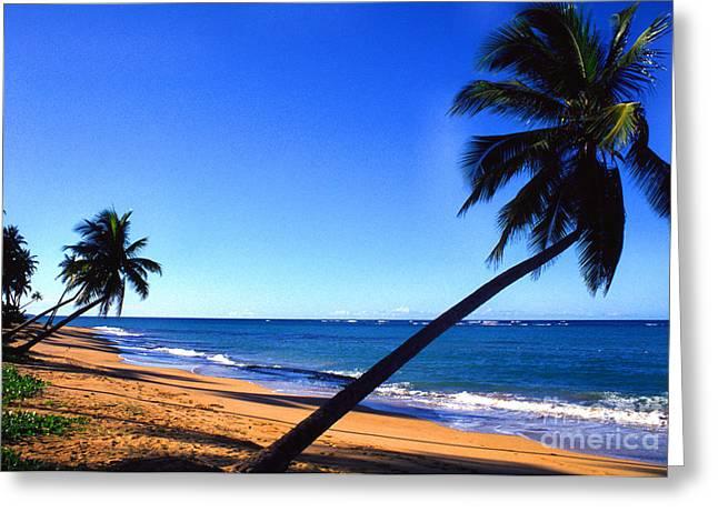 Puerto Rico Beach Greeting Card by Thomas R Fletcher