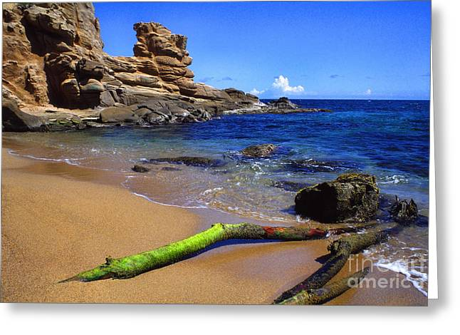 Puerto Rico Toro Point Greeting Card by Thomas R Fletcher