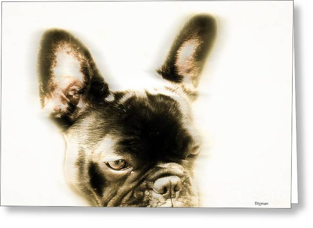 Puppy Digital Greeting Cards - Frenchy  Greeting Card by Steven  Digman