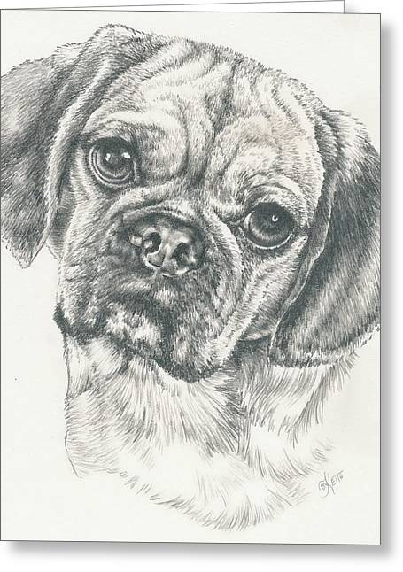 Toy Dogs Drawings Greeting Cards - Puggle Again Greeting Card by Barbara Keith