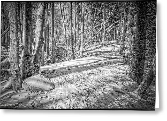 Wintry Greeting Cards - Pulled into the woods Black and White 2 Greeting Card by LeeAnn McLaneGoetz McLaneGoetzStudioLLCcom