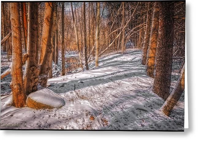Blizzard Scenes Greeting Cards - Pulled into the woods Greeting Card by LeeAnn McLaneGoetz McLaneGoetzStudioLLCcom