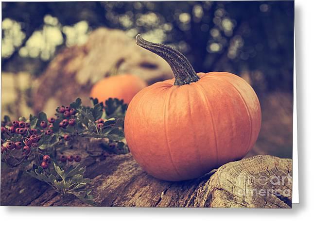 Pumpkin Greeting Card by Amanda Elwell