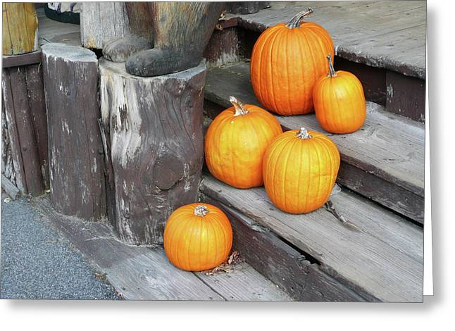 Self Discovery Photographs Greeting Cards - Pumpkin Autumn in Adirondacks Greeting Card by Kate  Leikin