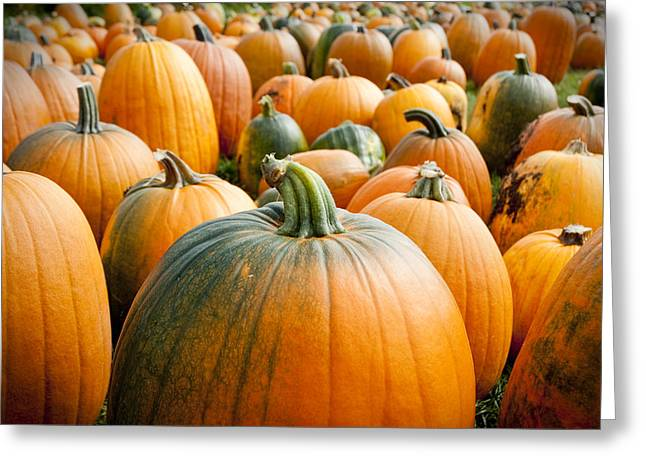 Pumpkins Greeting Cards - Pumpkin Fest Greeting Card by Greg Fortier