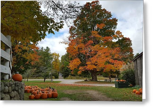Pumpkin Mill Greeting Card by 2141 Photography