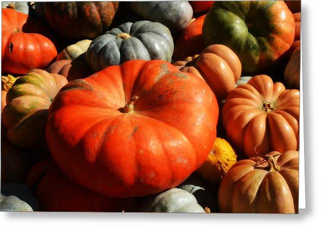 Patch Greeting Cards - Pumpkin Patch Greeting Card by Traci LaRussa