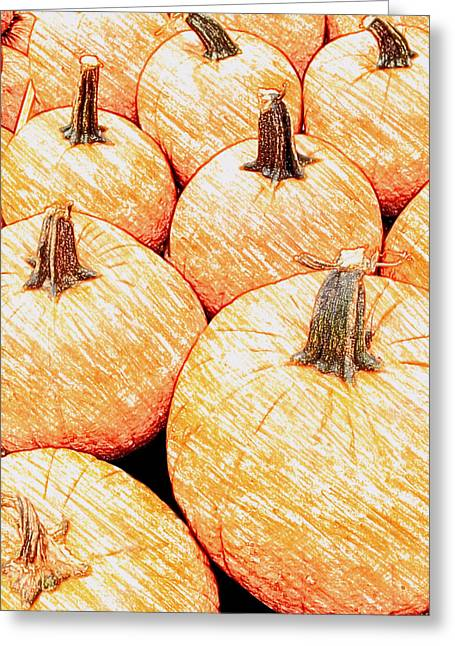 Charlotte Greeting Cards - Pumpkin Time Greeting Card by Morgan Carter