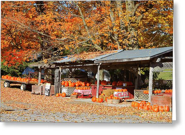 Pumpkins For Sale Greeting Card by Louise Heusinkveld