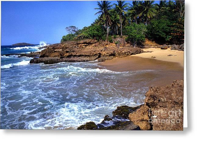 Puerto Rico Photographs Greeting Cards - Punta Morillos near Arecibo Greeting Card by Thomas R Fletcher