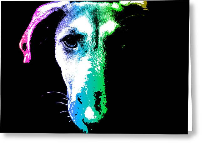 Puppy Digital Art Greeting Cards - Puppy dog head portrait colors art Greeting Card by Gregory DUBUS