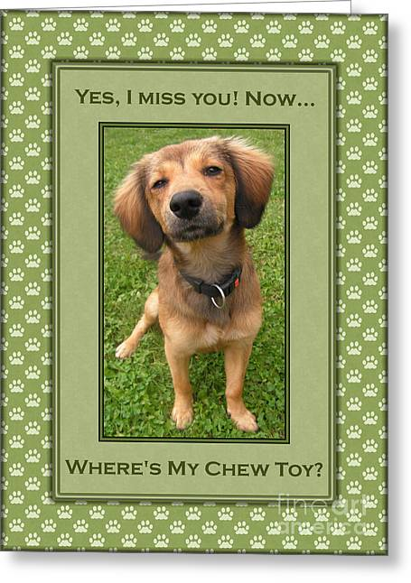 Toy Dog Greeting Cards - Puppy Eye Miss You Greeting Card by JH Designs