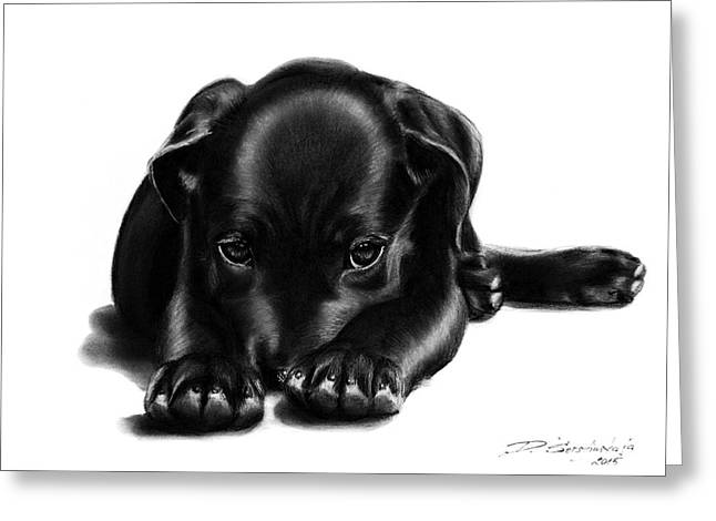 Puppies Drawings Greeting Cards - Puppy Resting Greeting Card by Danguole Serstinskaja