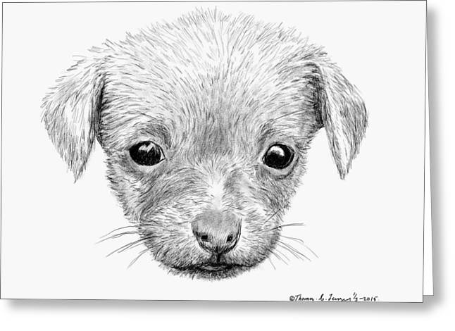 Puppies Drawings Greeting Cards - Puppy Greeting Card by ThomasE Jensen