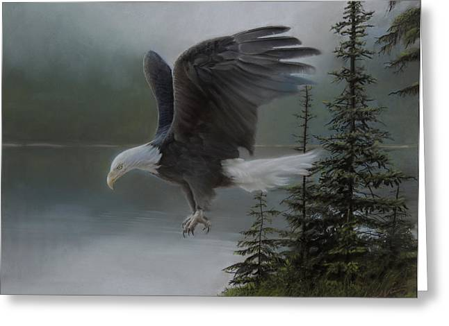 Bald Eagle Pastels Greeting Cards - Purden Lake Greeting Card by David Vincenzi
