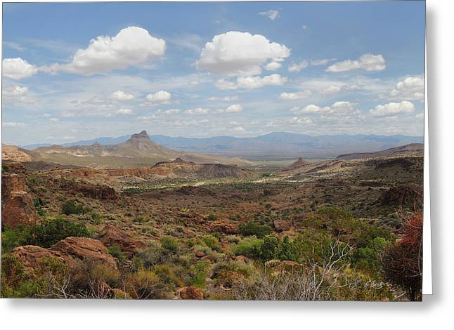 Cave Creek Western Greeting Cards - Pure Arizona Greeting Card by Gordon Beck