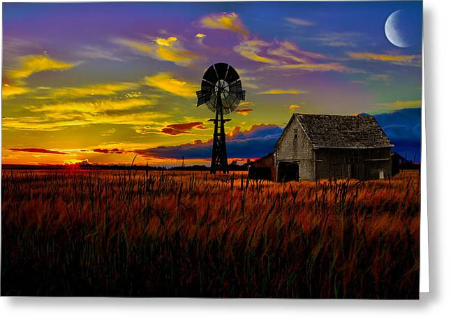 Maine Farms Greeting Cards - Pure Country Greeting Card by Gary Smith