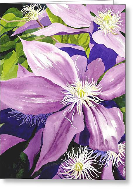 Purple Clematis In Sunlight Greeting Card by Janis Grau