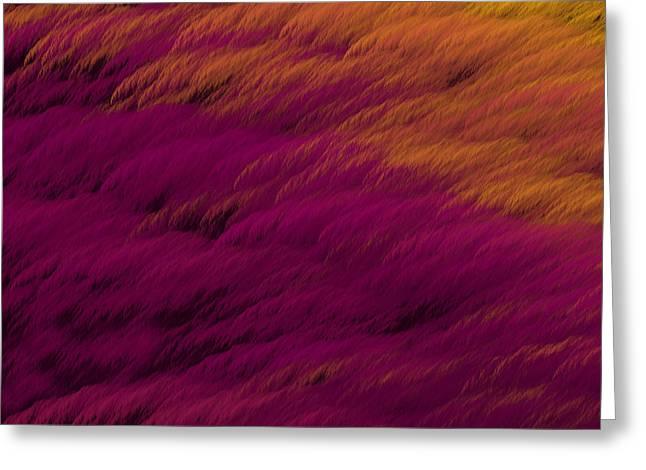 Festivities Greeting Cards - Purple Feathers Greeting Card by Lena Kouneva
