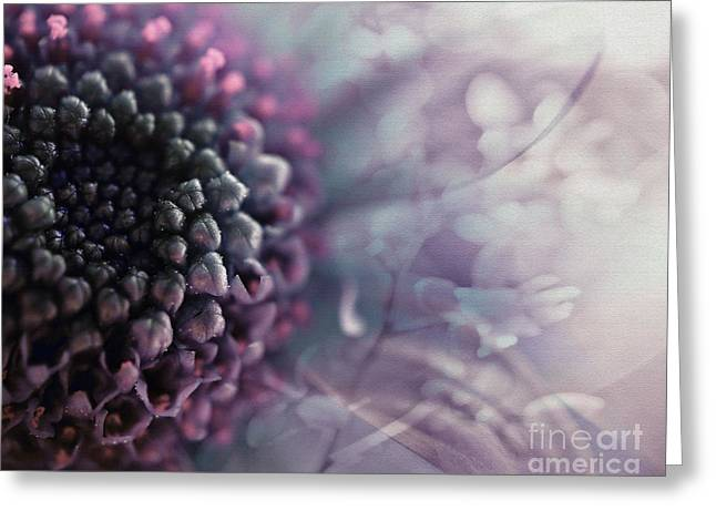 Abstract Flower Greeting Cards - Purple flowers 2 Greeting Card by SK Pfphotography