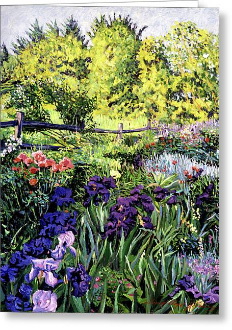 French Country Greeting Cards - Purple Garden Greeting Card by David Lloyd Glover