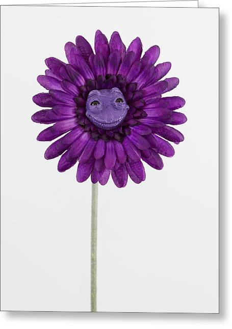 Happy Sculptures Greeting Cards - Purple happy flower Greeting Card by Michael Palmer